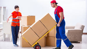 movers and packers in adyar